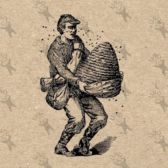 Antigua imagen apicultura colmena abeja colmena retro dibujo