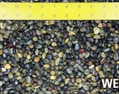 Free Shipping 3 Lbs Beach Pebbles for Bonsai Tree Humidity Tray and Lucky Bamboo