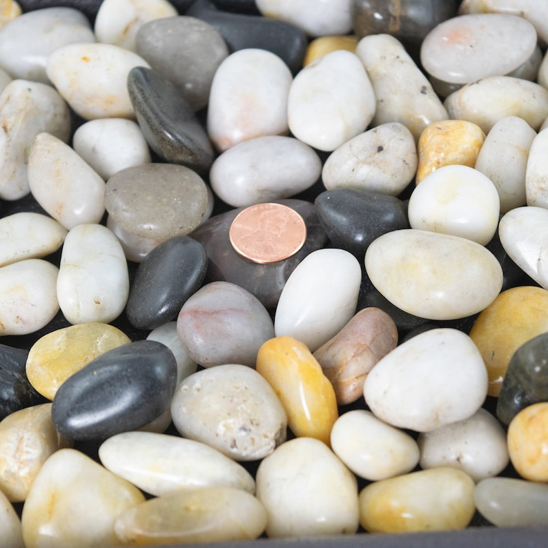 Bonsai Bonsai Humidity Drip Tray 8 X 10 With Pebbles Rocks Top Quality Must Have Home Garden