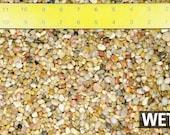 Free Shipping 3 Lbs Salmon Bay Pebbles for Bonsai Tree Humidity Tray Lucky Bamboo