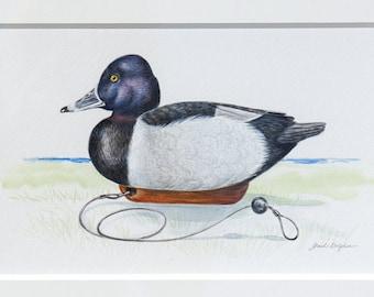 "Ringneck Duck Decoy Original Acrylic 13"" x 17"""
