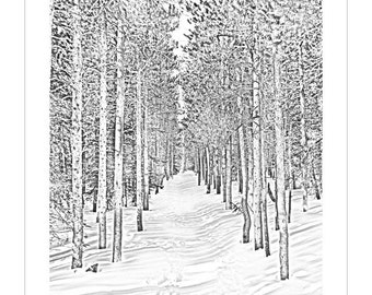 Bierstadt Snowtrail -- by James Ribniker -- Giclee on paper