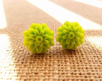 Lime Green Chrysanthemum Flower Stud Earrings