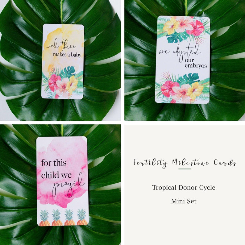 Tropical Donor Cycle Mini Set
