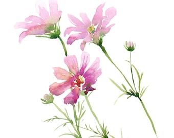 Pink Cosmos Watercolor Painting, original art, floral watercolor, watercolor flowers, 8x10