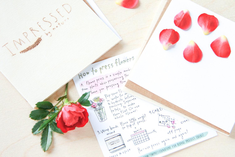 Flower Press Diy Kit Handmade Wooden Flower Press Etsy