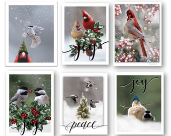 ASSORTED - Cardinal Greeting Cards, Christmas, Bird Lovers,  (Set of Six Assorted)