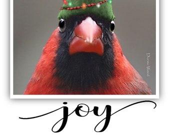 Cardinal Greeting Cards, Christmas, Bird Lovers,  (Set of Ten)