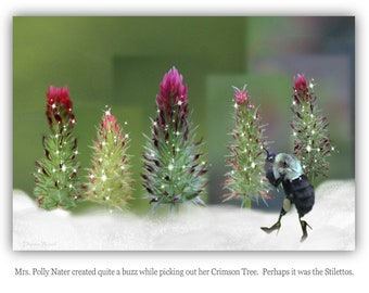 Greeting Cards, Christmas, Bird Lovers,  Crimson Clover Bees Clever witty cards  (Set of Six)
