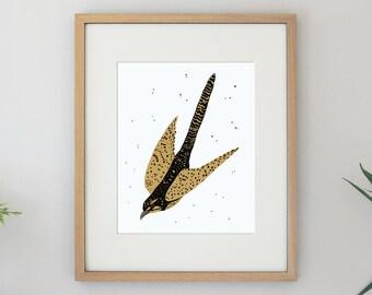 Cuckoo Bird Illustration Flying Bird Archival Art Print