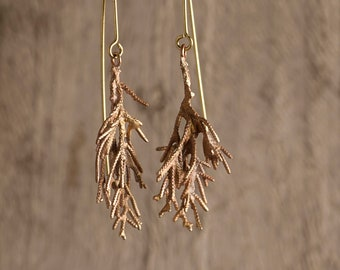 cypress branch earrings, organic earrings, real branch made on brass, golden branch, original earrings, nature inspired, one of a kind piece