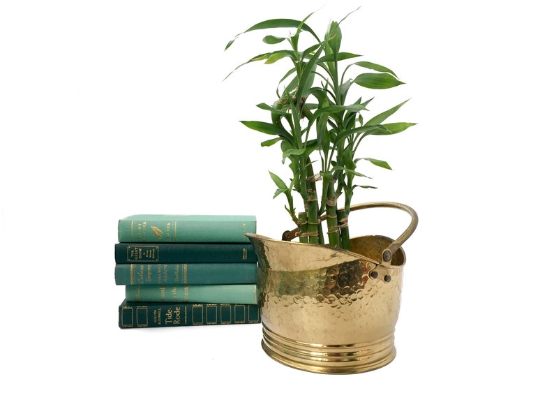 Brass Planter With Handle Vintage Hammered Brass Succulent image 0