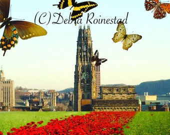 Butterfly Tower Collage