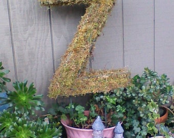 """Wire letter 20"""" tall mossed topiary"""