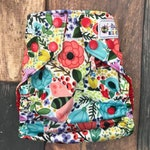 Ladybug Garden OS Pocket Diaper with Insert