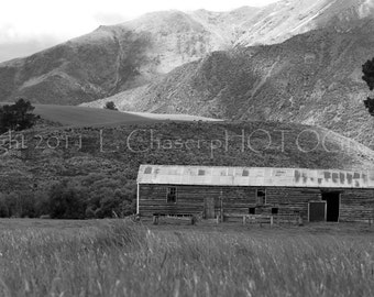 New Zealand Barn