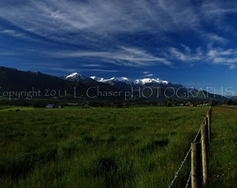 Fence and Pasture, New Zealand