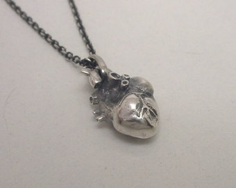 Anatomical Human Heart Pendant - Small, Sterling Silver