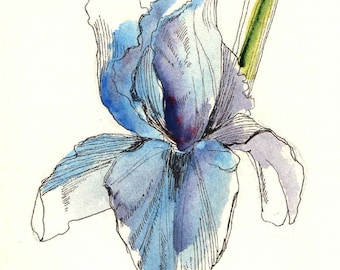 Pretty as a picture!-Collection of 8 cards, various botanical flowers.
