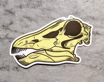 Diplodocus skull sticker | Dinosaur sticker | Paleontology Sticker | Sauropod decal | Long-neck dinosaur | Water Bottle Sticker