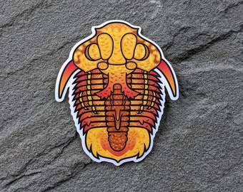 Trilobite sticker | Water bottle sticker | Paleontology sticker | Ordovician Fossil Decal | Science Geek Laptop Sticker