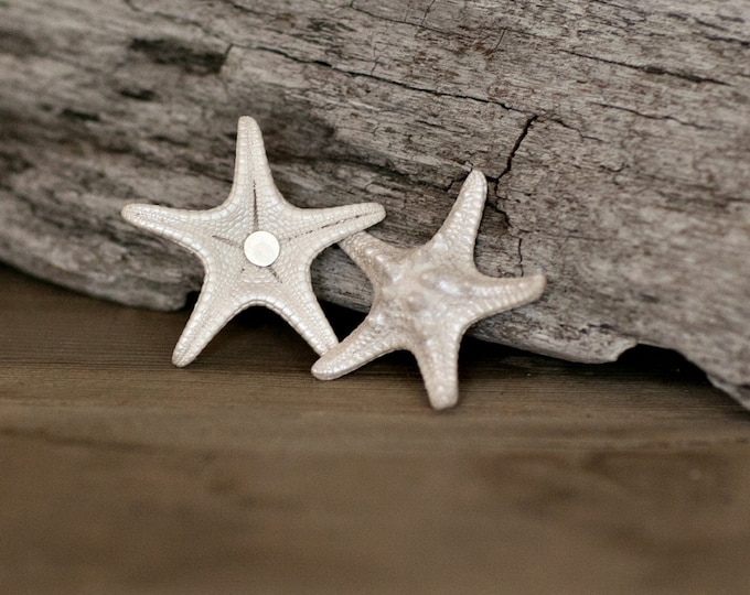9 pc Shell Magnets - Fridge Magnets - Nautical Decor Starfish and Sea Biscuit Seashell Magnets  - Beach Wedding Favors - Whiteboard Magnets