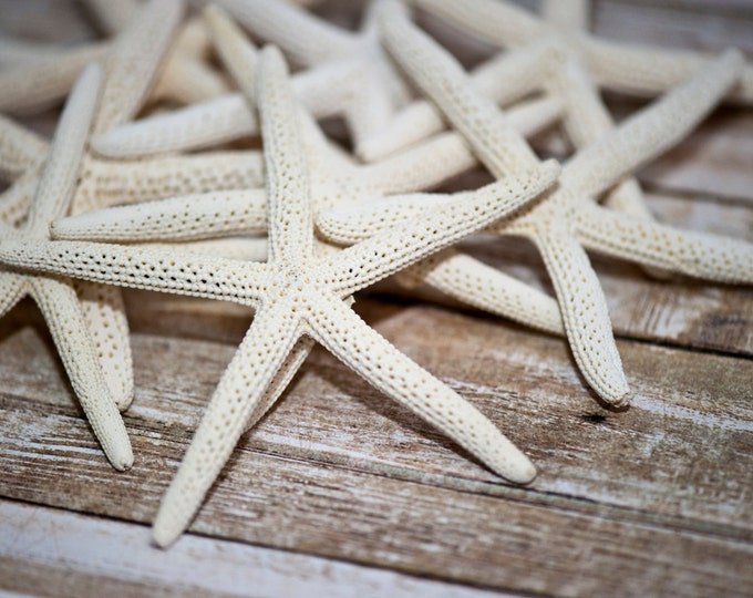 "Beach Decor Starfish - Nautical Decor White Finger Starfish - Natural Pencil Starfish 6 pcs. - 3""-4"""