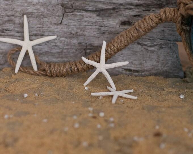 "Beach Decor Starfish - Nautical Decor White Finger Starfish - Natural Pencil Starfish 12 pcs. - 4""-5"""
