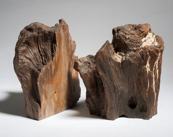 Museum Quality Petrified Wood Bookends