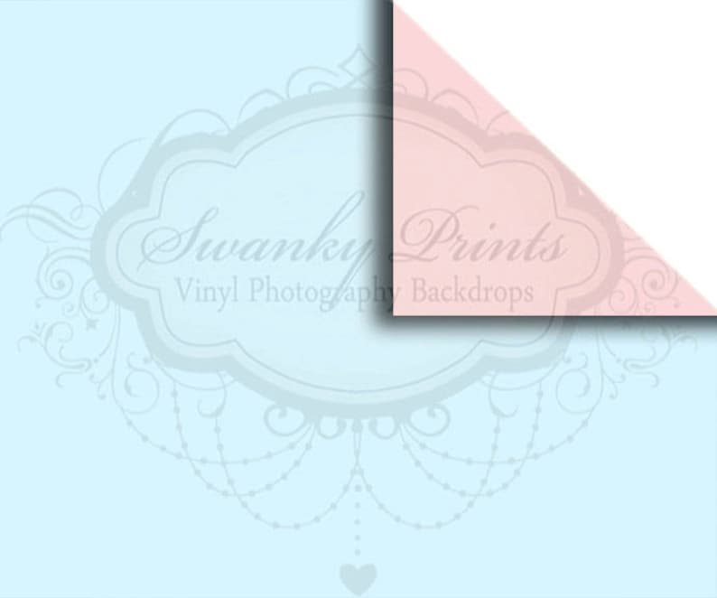 NEW ITEM  8ft x 5ft REVERSIBLE Vinyl Backdrop  Double sided  Baby Blue Soft Pink
