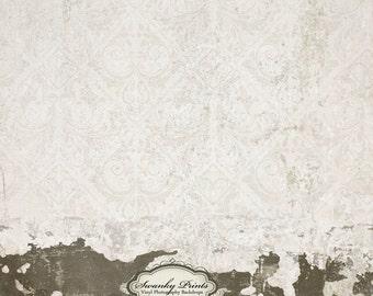 NEW ITEM 2ft x 2ft Vintage Damask Grunge Wall / Vinyl Photography Backdrop Floordrop Newborn photos