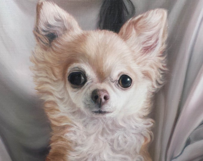 Custom Pet Portrait  PET PAINTING - Chihuahua - Oil Painting - Dog Portrait