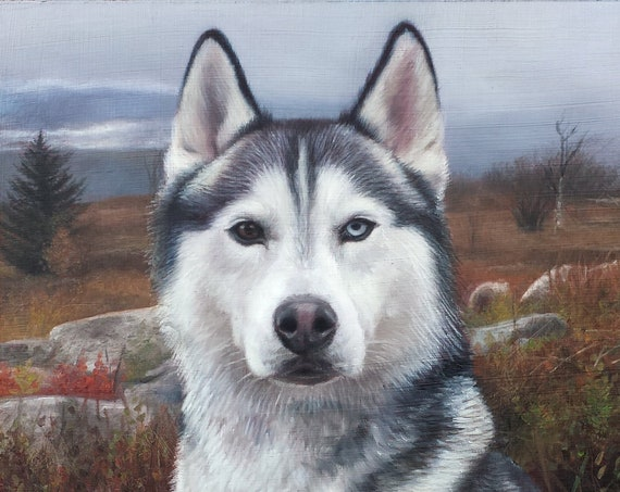 CUSTOM PET PORTRAIT - Painting of Husky - Oil Painting - Dog Portrait