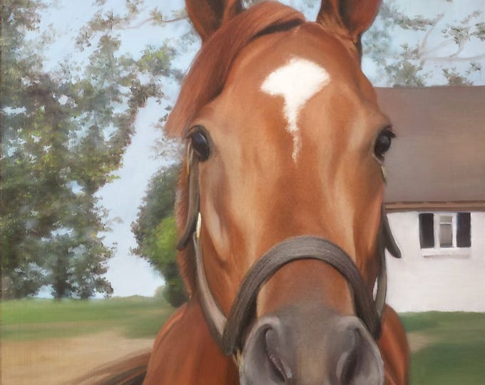 CUSTOM HORSE PAINTING - Oil Painted Portrait - Custom Painting of Horse