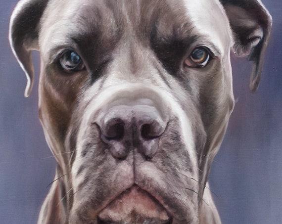 CUSTOM PET PORTRAIT - Pet Painting - Dog Painting - Oil Portrait - Pit Bull - Bulldog