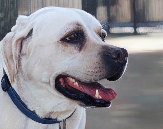 Custom Pet Portrait - Chocolate Lab  - Yellow Lab - Oil Painting - Dog Art - Pet Painting