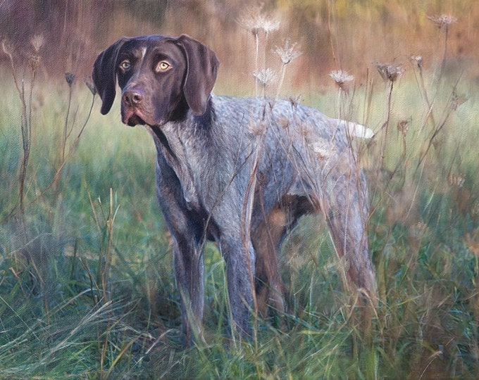 CUSTOM PET PORTRAIT - Oil Painting - Hunting Dog - Dog Portrait - German Short Haired Pointer - Setter - Lab