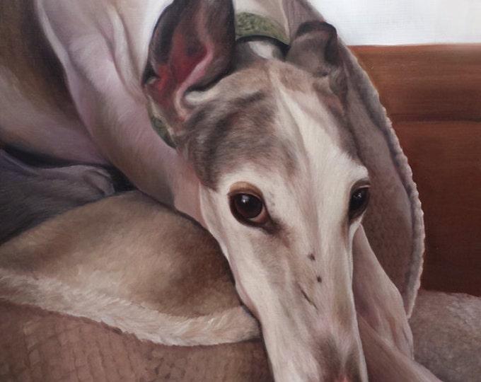 CUSTOM PET PORTRAITS - Custom Pet Painting - Greyhound - Pet Oil Painting - Dog Portrait