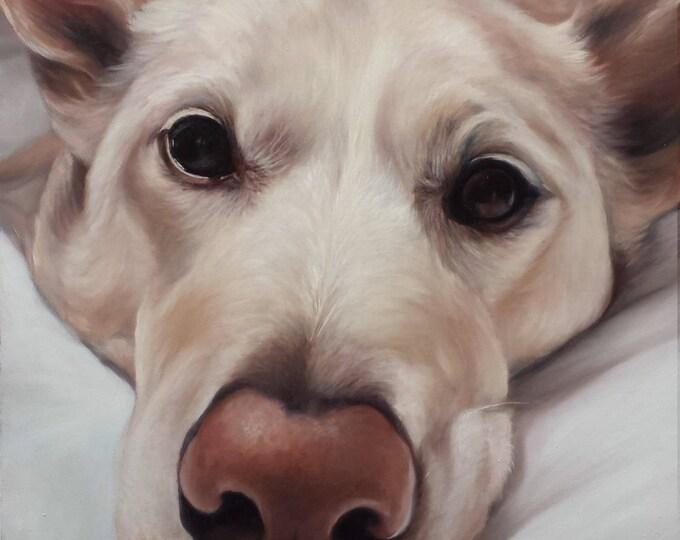 CUSTOM PET PORTRAIT - Pet Painting - Dog Portrait - Oil Painting - Custom Portrait of Pet - Lab - German Shepherd - Boston Terrier