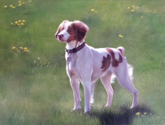 CUSTOM PET PORTRAIT - Oil Painting - Custom Painting - Pet Painting - Oil Portrait