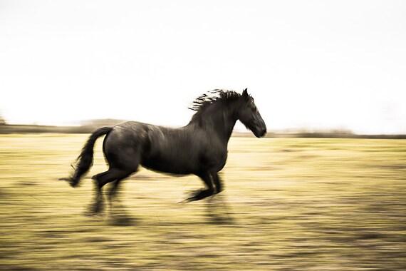 Mustang velocità Dating ragazza nome