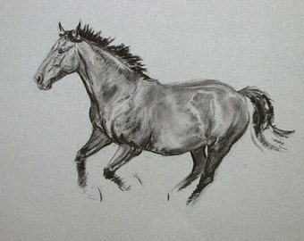 SALE Original horse art equine art energy and movement equine horse charcoal movement art drawing 'Well to do' by H Irvine