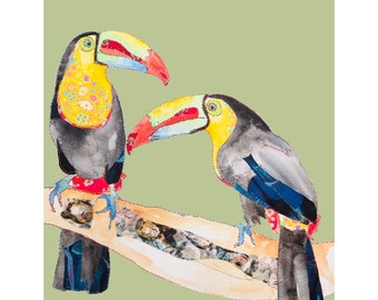 Toucans - Chester Zoo