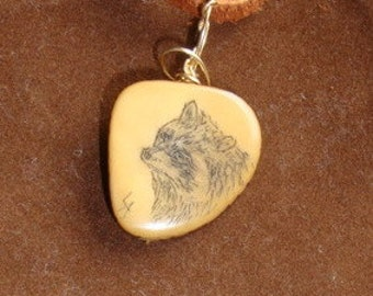 Raccoon scrimshaw (etched) on a Tagua Nut