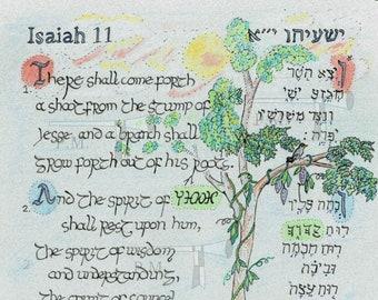 Isaiah 11:1-2 Illumination Hebrew-English , pastels ישעיהו י׳׳א