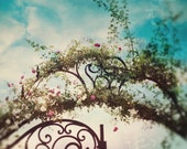 French Gate Photo, Blue, Dreamy, Iron Fence, Gate, Nursery Decor, Cottage Art, Shabby Chic, Architecture, Overgrown, Flowers, Fairy Tale
