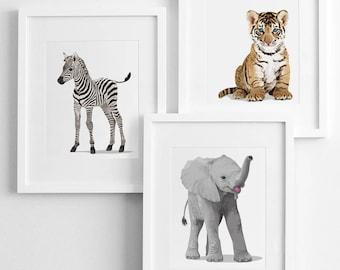 safari animal nursery baby artwork, baby jungle animal -pick any 3 unframed prints-  nursery decor gender neutral - modern nursery art