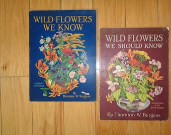 Great Wild Flower We Know Pamphlets with wonderful lithographic prints, Written by Thornton W. Burgess and illustrated by the Pitts Studios