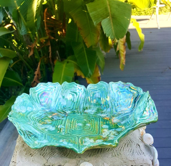 Turtle shell dish