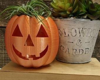 Pumpkin Planter, Jack o lantern Planter for Indoor Air Plant Gardening, OR Tea light candle holder